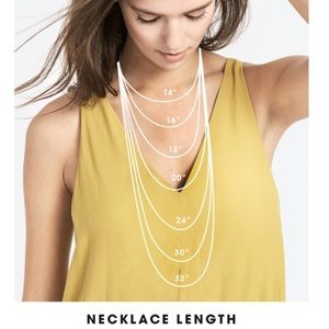 BaubleBar Jewelry - BaubleBar - gold chevron pendant long necklace